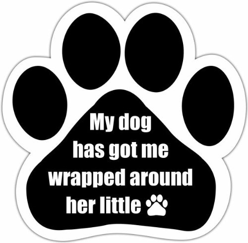 """""""My Dog Has Got Me Wrapped Around Her Little Paw"""" Car Magnet With Unique Paw Shaped Design Measures 5.2 by 5.2 Inches Covered In UV Gloss For Weather Protection"""