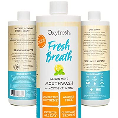 Oxyfresh Lemon Mint Mouthwash - Oxygene & Zinc - 1 bottle 16oz- Alcohol Free Solution for Long-Lasting Fresh Breath & Dry Mouth Prevention Dye-Free, Gluten Free, Naturally Flavored with Essential Oils