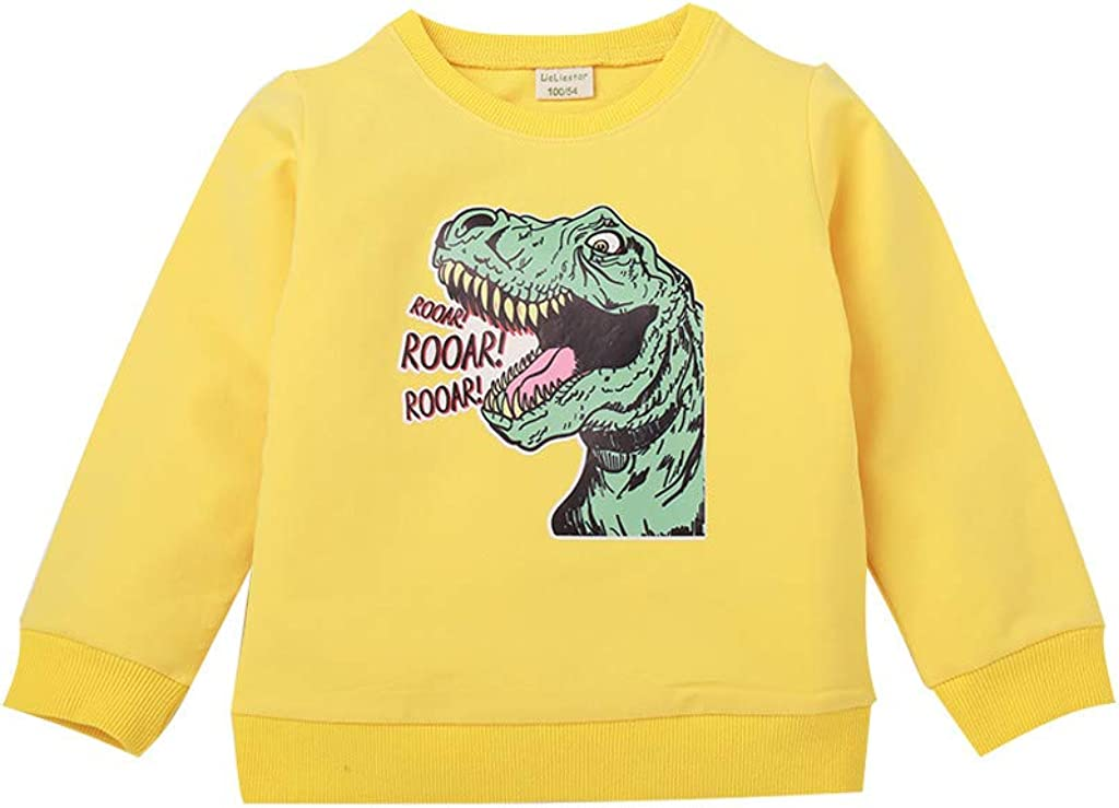 Yezijin Teen Kid Boys Girls Cartoon Dinosaur Letter Tops Sweatshirt Outwear Pullover for 1-7 Years Old
