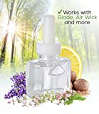 NEW- 3 Pack Clary Sage & Lavender Blend Plug in Refill - For Glade, Air Wick and more