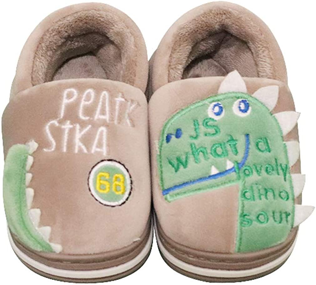 FCTREE Girls Boys Home Slippers Kids Warm Dinosaur House Slippers Toddler Indoor Shoes