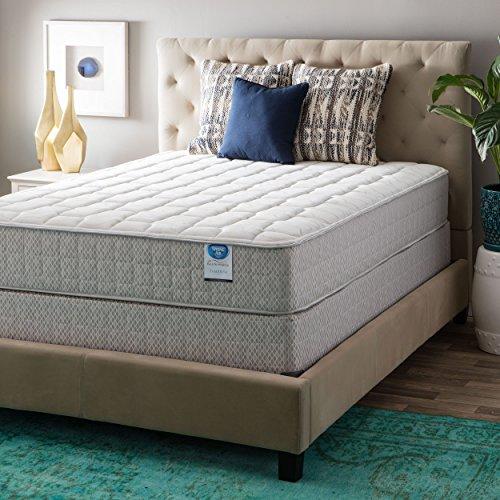 Spring Air Value Collection Tamarisk Queen-size Firm Mattress Set - Brown/Beige