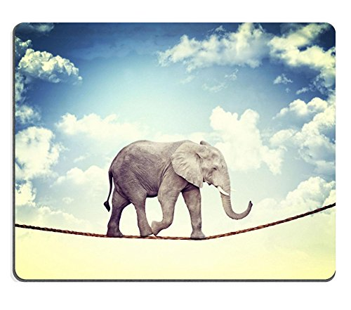 MSD Mousepad abstract image of acrobat elaphant Image 19749625 Customized Tablemats Stain Resistance Collector Kit Kitchen Table Top DeskDrink Customized Stain Resistance Collector Kit K ()