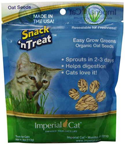Imperial Cat (Imperial Cat Easy Grow Oat Grass Seeds, 4-Ounce)