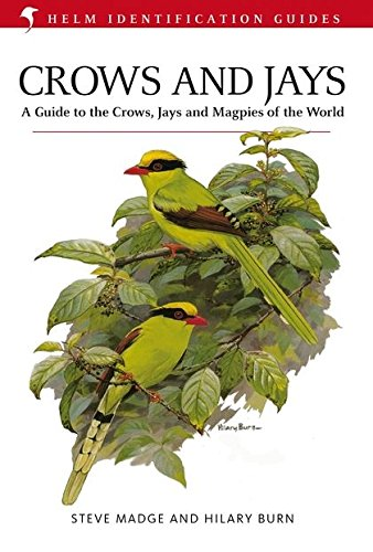 Crows and Jays (Helm Identification Guides) by A&C Black