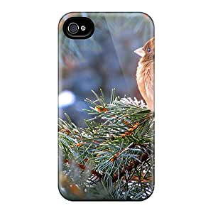 Cute Tpu Jasoneyk Sweet Sparrow Case Cover For Iphone 4/4s