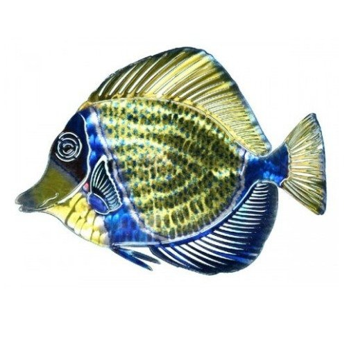 - Next Innovations WA3DMANGELFISHBL/GR Angelfish Refraxions 3D Wall Art, Blue and Green