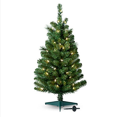Set of 4, Pre-Lit 2' Tall Artificial Pathway Christmas Trees for Indoor/Outdoor use. Includes 50 warm white led lights, steel ground stake by Kringle Bros (Image #1)