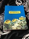 Prealgebra and Introductory Algebra Bundle, D. Franklin Wright, 1932628932