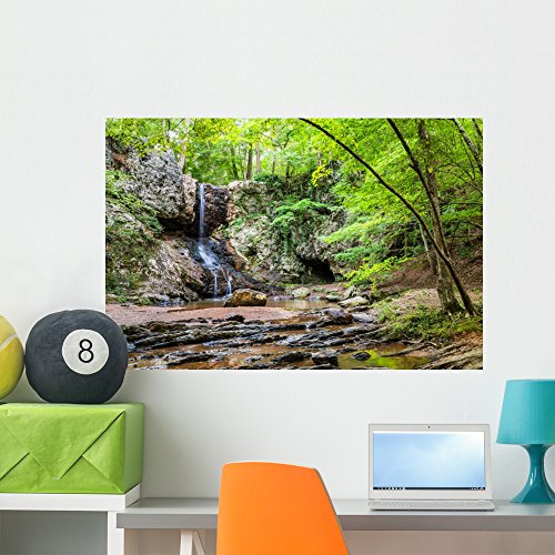 Wallmonkeys Waterfall in Georgia Mountains Near Atlanta Wall Decal Peel and Stick Graphic WM37610 (36 in W x 24 in H)