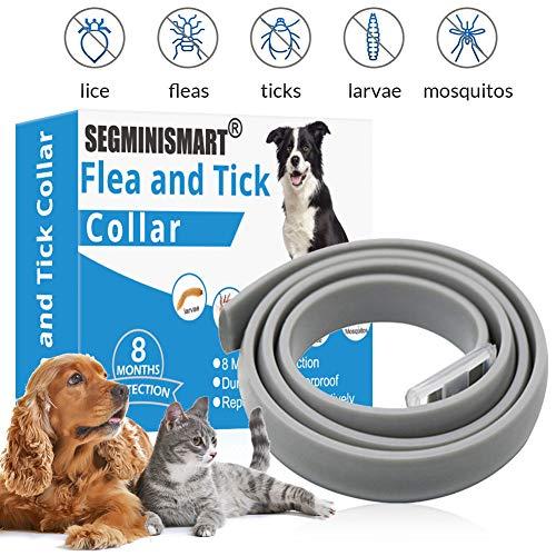 🥇 SEGMINISMART Collar Antiparasitos para Perro