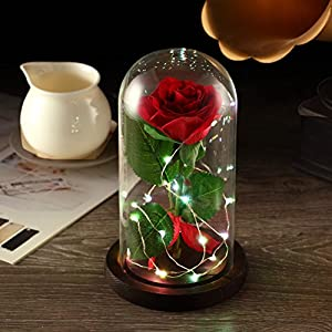 YSBER Beauty & The Beast Red Silk Rose and LED Light with Fallen Petals in Glass Dome on a Wooden Base 2