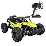 Fistone RC Car 2.4G High Speed Racing Cars 25km/h 1:16 Iron Radio Control Monster Truck Rock Off-Road Vehicle Buggy Hobby Electronic Game Toys Model (Yellow)