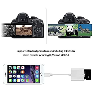 Camera SD Card Reader Trail Game Camera Card Viewer Reader, Lightning 8 Pin to SD Card Tail Camera Card Reader for Hunting for Apple iPhone / iPad (UPGRADED VERSION) - White from Power Gadgets ⚡