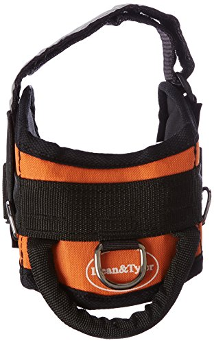 dean and tyler harness small - 3