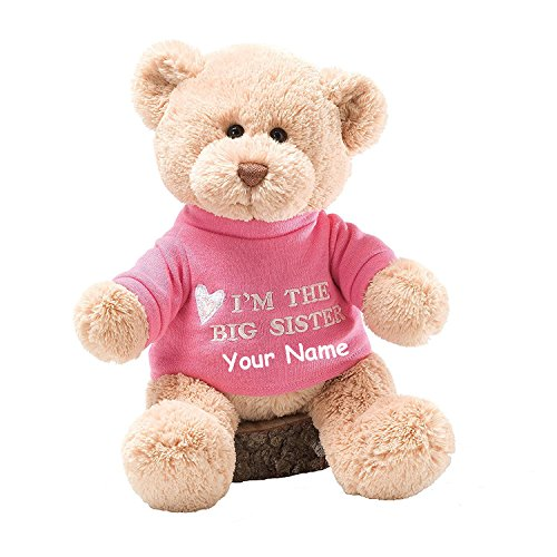 Personalized GUND I'm the Big Sister T-Shirt Teddy Bear Plush Stuffed Animal (Big Sister Teddy Bear)