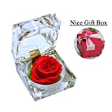 Handmade Preserved Fresh Flower Rose with Acrylic Crystal Box - Romantic Small Gift Ideas for Valentine's Day, Anniversary, Birthday (Red)
