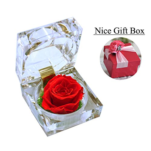 Handmade Preserved Fresh Flower Rose with Acrylic Crystal Box - Romantic Small Gift Ideas for Valentine's Day, Anniversary, Birthday (Red) (Valentines Gift Boxes)