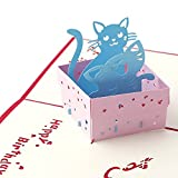 Arich 3D Pop UP Holiday Greeting Cards Valentine's Day Happy Birthday Gift--Cat