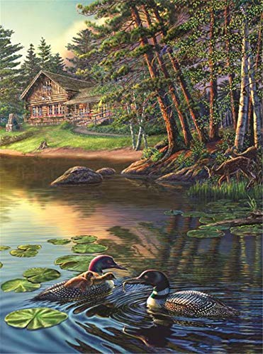 paint by numbers for adults duck - 4