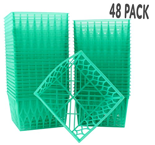 48-Pack Pint Size Plastic Berry Baskets, 4-Inch Berry Boxes with Open-Weave Pattern, Ideal for Summer Picking & Crafts! (48 Boxes) (Empty Easter Baskets Wholesale)