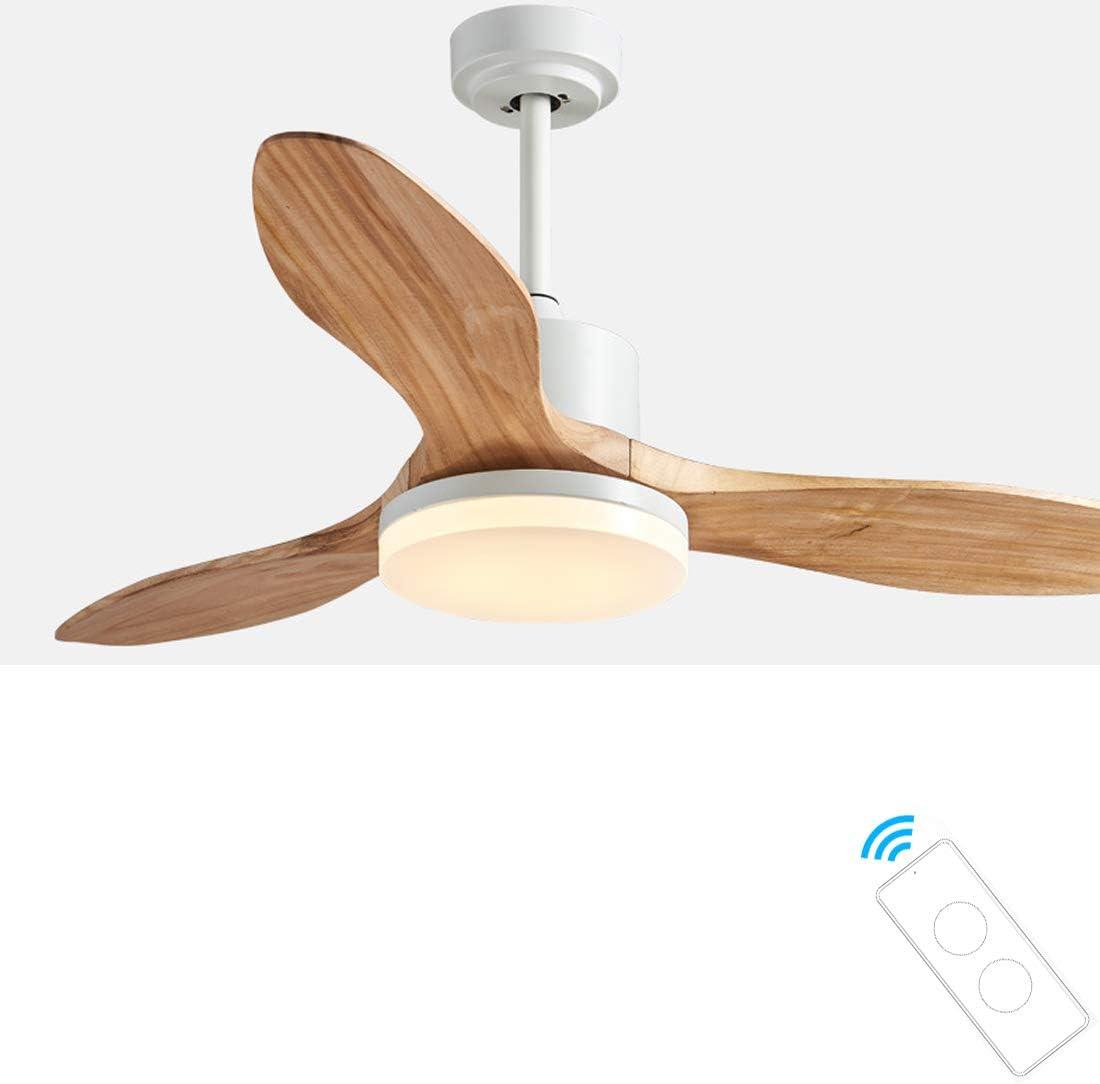 Ventilador de Techo Iluminación interior 122 cm de Diámetro, Luz, 3 Aspas Reversibles, 3 Velocidades, Función Invierno, Dimable 2700K-5000K,B