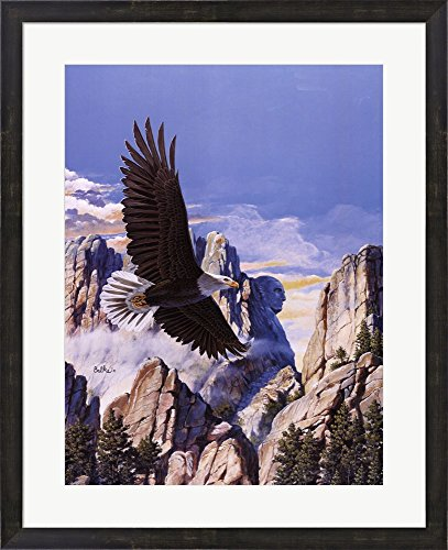 - (Freedom) Eagle in Flight by Don Balke Framed Art Print Wall Picture, Espresso Brown Frame, 25 x 31 inches