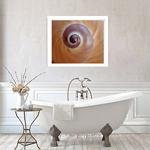 Seashell Artwork, Sea Urchin Macro Photography, Abstract Wall Art, Spiral Art Print, Modern Art Wall Decor, Bronze Brown Picture from 5x7 to 18x36 by Natural Photography Spa