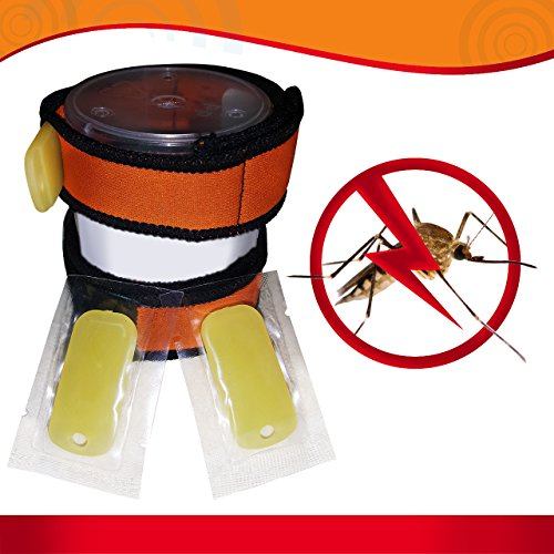 All Natural Mosquito Spray For Dogs