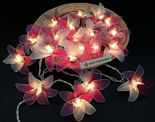NAVA CHIANGMAI Thai Vintage 20 Flower Romantic String Lights Plug In, Fairy Flora Decorated, Decorative Lights Wedding Gardens Party Valentine's Day Christmas Decoration (Purple Pink White Orchid) by NAVA CHIANGMAI String Lights