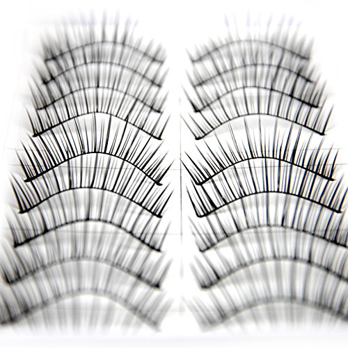 Fashion Zone 10 Pairs Natural Long False Fake Eyelashes Eye Lash Make Up Set Eye Extension Kit