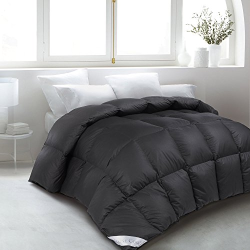 ROSECOSE Luxurious Goose Down Comforter Queen Size Duvet Insert All Seasons Hypo-allergenic 1200 Thread Count 750+ Fill Power 100% Cotton Shell Down Proof with Tabs (Queen,Black)