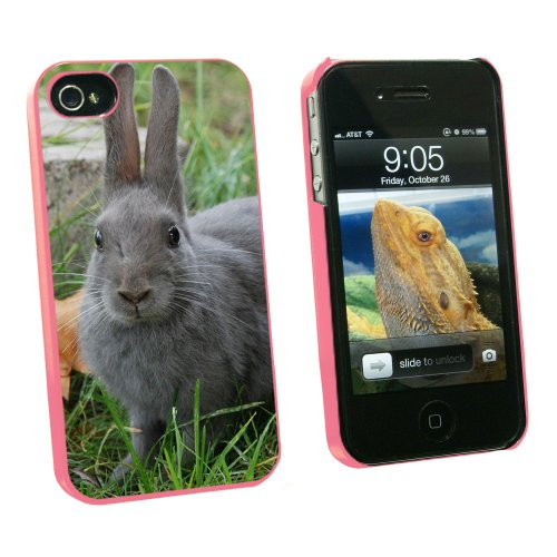 Graphics and More Bunny Rabbit Gray - Easter - Snap On Hard Protective Case for Apple iPhone 4 4S - Pink - Carrying Case - Non-Retail Packaging - Pink