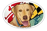 euro fridge - Maryland Yellow Lab Oval Magnet, 6 x 4 inches - Euro Car Fridge Locker Vinyl Magnet