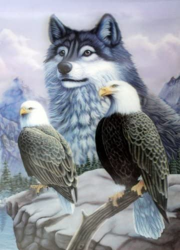 OFA Products Two Eagles /& Wolf 3D Lenticular Picture High Definition 3D Picture