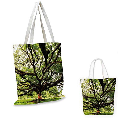 Nature small clear shopping bag The Largest Monkey Pod Tree in Thailand Eastern Green Big Branches Growth Eco Photo sloth shopping bag Green Brown. 14