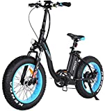 Folding Electric Bicycles 48V 500W Motor Low Step Through Ebikes For Adults...