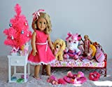 American Girl Doll Blond Blonde Hair Birthday Party Review and Comparison