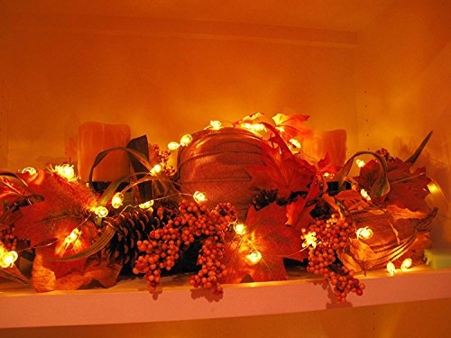 Jack-O-Lantern Orange Pumpkin String Lights - 10ft 40LEDs Long Battery Operated Copper Wire With the Remote & Timer for Indoor/Covered Outdoor/Autumn Parties & Home/Dorm Room Decorations by MIYA LIFE (Image #4)