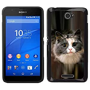 Caucho caso de Shell duro de la cubierta de accesorios de protección BY RAYDREAMMM - Sony Xperia E4 - Lindo gato felino mascota peluda gris de pelo largo