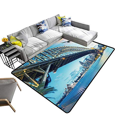 - Super Cozy Bathroom Rug Carpet Passenger air Over Sydney Australia Travel Concept Provides Protection and Cushion for Floors 22 x 36 inch