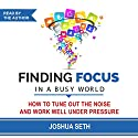Finding Focus in a Busy World: How to Tune out the Noise and Work Well Under Pressure Audiobook by Joshua Seth Narrated by Joshua Seth