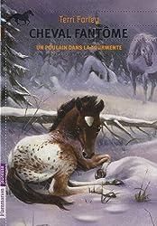 Cheval fantôme, Tome 5 : Un poulain dans la tourmente