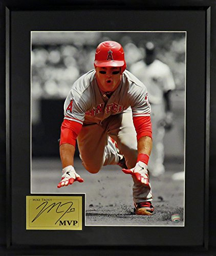 Angels Los Angeles Photograph (Los Angeles Angels of Anaheim Mike Trout Spotlight 16x20 Photograph (SGA Signature Engraved Plate Series) Framed)