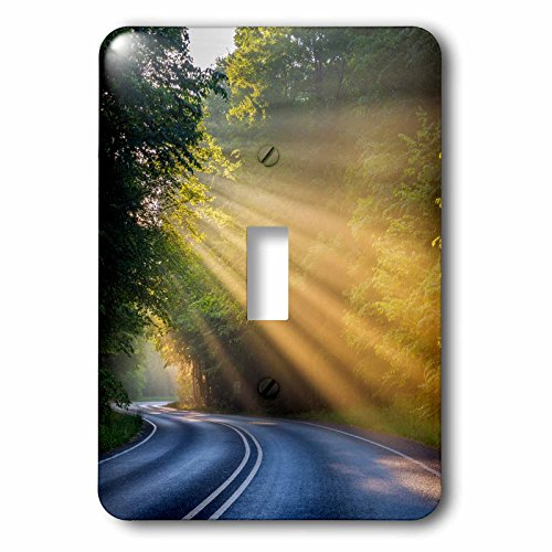 3dRose Danita Delimont - Roads - Fog rays over Pierre Stocking Drive near Empire, Michigan, USA - Light Switch Covers - single toggle switch - Rays Electric Michigan