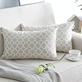 NATUS WEAVER 2 Pack Canvas Lumbar Pillow Cover Case for Couch Sofa Home Decor, Modern Quatrefoil Accent Geometric, 12 X 20 Inches, Beige