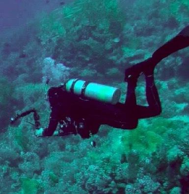 Scuba Diving Hand Signals: Pocket Companion for Recreational