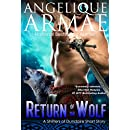 Return of the Wolf (Shifters of Dundaire 5)