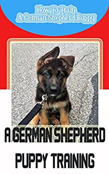 how to raise and train a german shepherd puppy