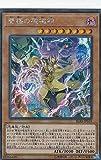 遊戯王 IGAS-JP019 雙極の破械神 (日本語版 シークレットレア) イグニッション・アサルト
